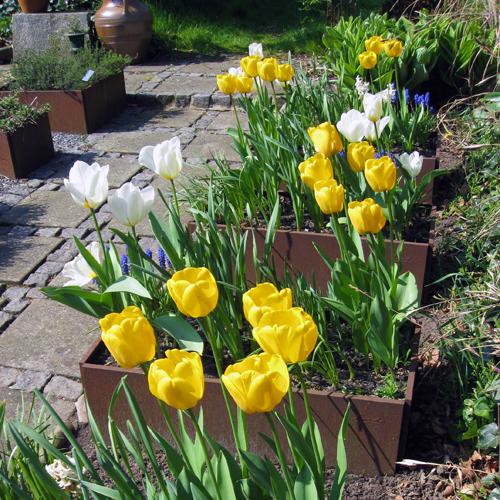 Avlang plantekasse med blomster fra LandHage.no