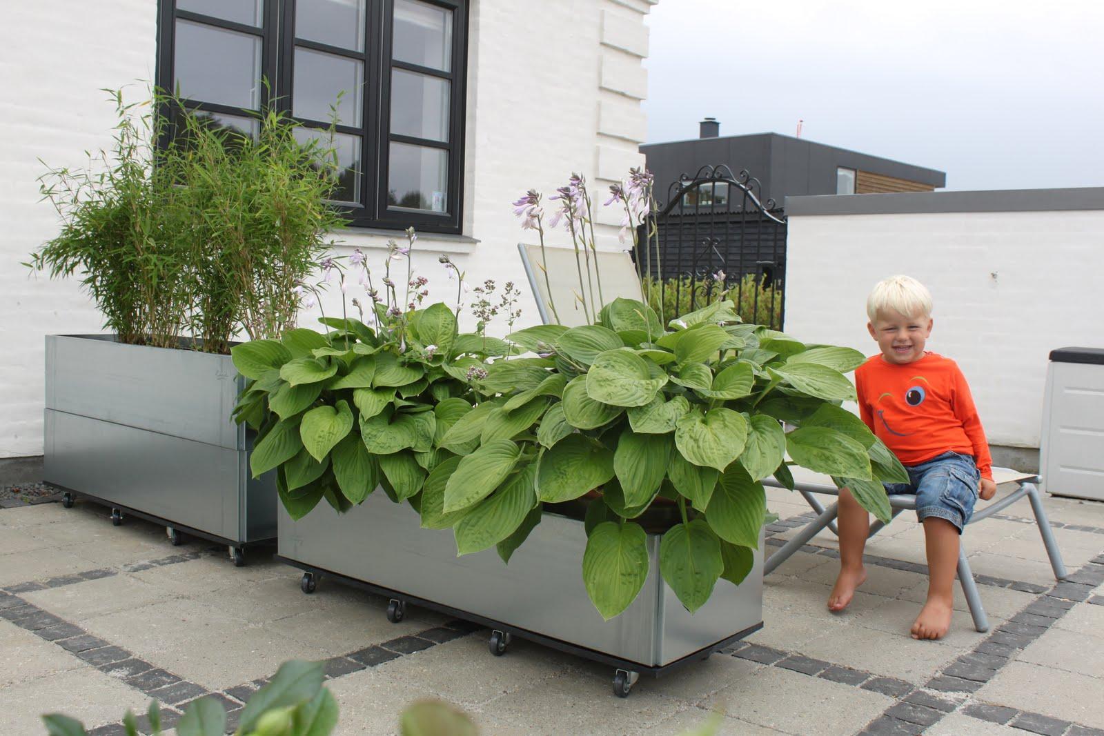 mobile blomsterkasser som skillelinje på terrassen