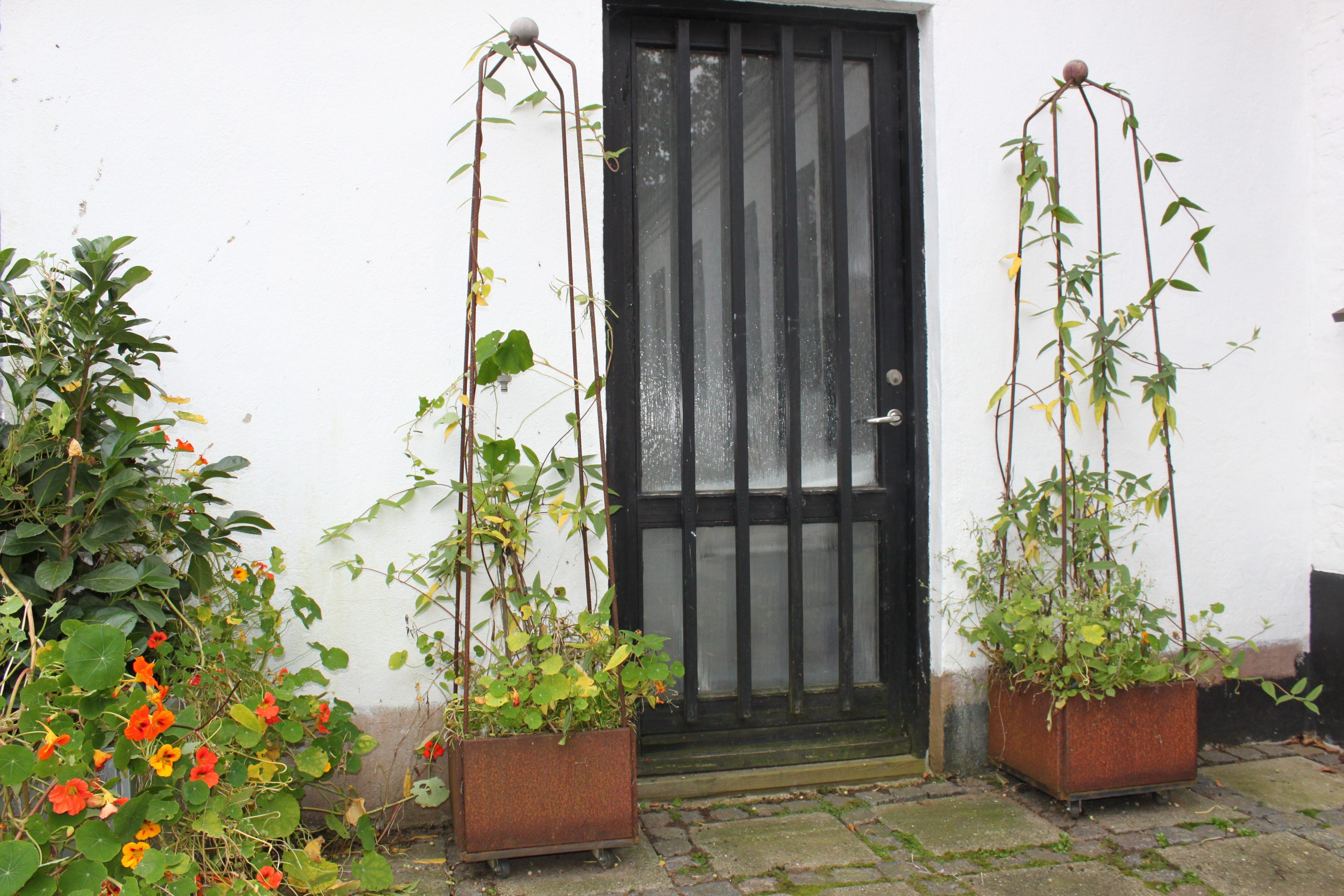 verandaer med trellises