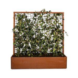 Land Classic plantekasse med espalier og skjulte føtter i rust fra LandHage.no