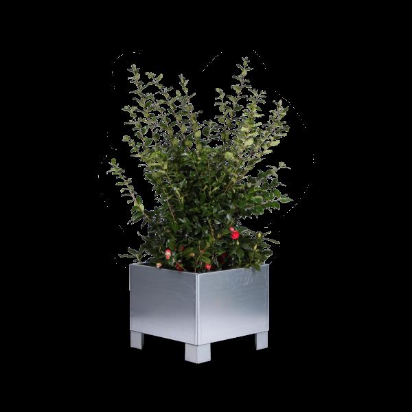 Land Modern 60x60 cm blomsterkasse med ben fra LandHage.no